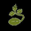 Kasuromi-Custom_Seed-1.0.0 icon