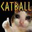 OdinPlus-CatBall-1.0.1 icon